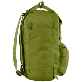 Fjällräven Re-Kånken Mini Daypack Spring Green